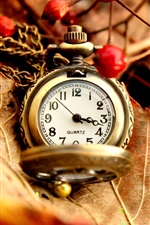Preview iPhone wallpaper Autumn leaves, pocket watch