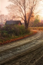 Preview iPhone wallpaper Fantastic scenery, autumn countryside, tree red leaves, road, house