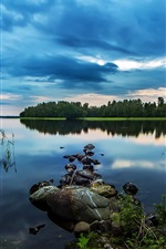 Preview iPhone wallpaper Pond, lake, early morning beauty, stones, woods, water plants, blue style