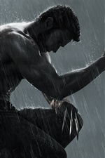 Preview iPhone wallpaper The Wolverine 2 HD