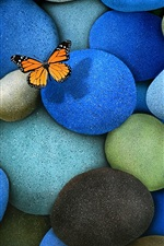Preview iPhone wallpaper The blue cobblestone, butterfly