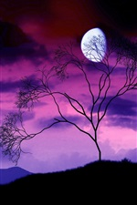 Tree branches, the moon at night, purple sky