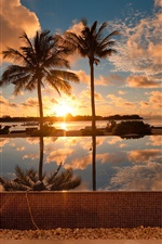 Preview iPhone wallpaper Tropical ocean scenery, palm tree, house, dusk