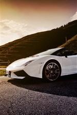 Preview iPhone wallpaper White Lamborghini Gallardo LP570-4 Spyder supercar