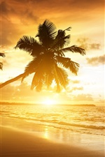 Preview iPhone wallpaper Caribbean coast beautiful scenery, sunrise, palm trees, sea, clouds, sky