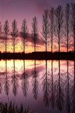 Preview iPhone wallpaper England beautiful nature landscape, lake, reflection, trees, sunset, dusk, purple