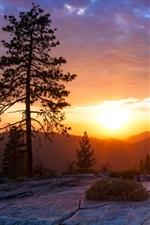 iPhone обои Восход солнца на холме, красивый пейзаж