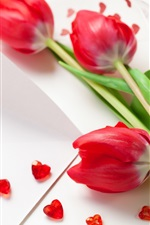 Três vermelhos flores tulipa, fitas, em forma de coração decoração