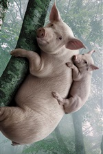 Preview iPhone wallpaper Pig and piggy climb the tree