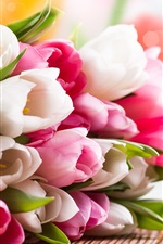 Preview iPhone wallpaper Pink and white tulip flower bouquet