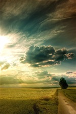 Preview iPhone wallpaper Plains landscape, grass, fields, road, tree, sky clouds, sun rays