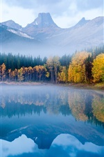 Preview iPhone wallpaper The autumn fog forest lake morning