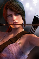 Preview iPhone wallpaper Tomb Raider 2013, use the bow
