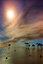 Preview iPhone wallpaper Water surface, trees reflection, horizon, sky, clouds, sun, rays