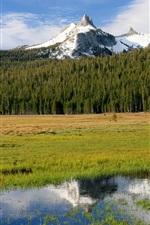 Preview iPhone wallpaper Yosemite National Park in USA California