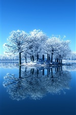 Preview iPhone wallpaper Blue beauty of the winter, snow, trees, mirror lake, reflection