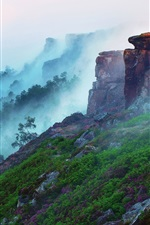Preview iPhone wallpaper Early morning mountain landscape, forest, fog, flowers, grass, stones
