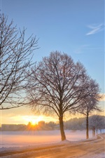 Preview iPhone wallpaper Germany winter snow landscape, road, trees, dawn, sunrise