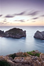 Preview iPhone wallpaper Seascape, sea, coast, rocks, lilac sky