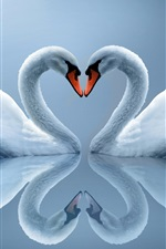 Preview iPhone wallpaper White Swan couple, love heart-shaped, reflection