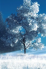 Preview iPhone wallpaper Art photography, winter, snow, trees, bench