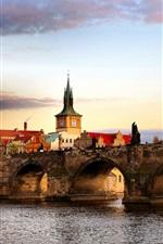 Preview iPhone wallpaper Czech Republic, Prague, city, river, bridge, houses