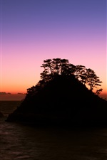 Preview iPhone wallpaper Japan, Shizuoka Prefecture, sea, rocks, trees, evening, sunset, purple sky