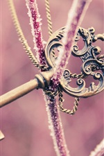 Preview iPhone wallpaper Mysterious key