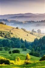 Nature landscape, sunrise, hills, trees, grass, fog