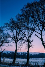 Preview iPhone wallpaper Norway winter scenery, trees, fields, frost, morning dawn