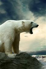 Urso polar na costa do mar