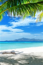Preview iPhone wallpaper Summer beach, sand, palm trees