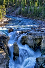 Preview iPhone wallpaper Sunwapta Falls, Jasper National Park, Canada, river, trees