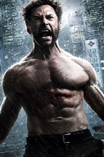 The Wolverine 2, movie 2013