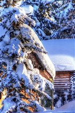 Preview iPhone wallpaper Alaska winter landscape, snow, forest, spruce, huts