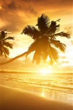 Preview iPhone wallpaper Beach sunrise beautiful scenery, sunlight rays