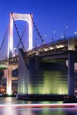 Preview iPhone wallpaper City night of Tokyo in Japan, bridge, buildings, lights