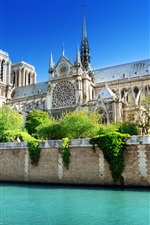 Preview iPhone wallpaper France, Paris, Notre Dame, the Seine river, water, blue sky, summer