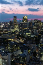 Preview iPhone wallpaper Japan capital Tokyo, city lights, tower, houses, skyscrapers, dusk