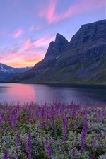 Preview iPhone wallpaper Norway nature scenery, lake, mountains, flowers, sunrise