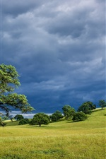 Preview iPhone wallpaper Spring nature landscape, USA California, hills, grass, trees, cloudy