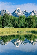 Preview iPhone wallpaper Stunning scenery, mountains, lake, plants, trees, water reflection