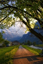 Switzerland, town, spring, trees, road, bench, houses, mountains