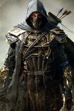Preview iPhone wallpaper The Elder Scrolls Online, warrior, assassin