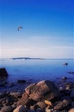 Preview iPhone wallpaper Awenda Provincial Park, Ontario, Canada, rocks, gulls, evening