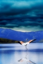 Preview iPhone wallpaper Creative art landscape, stork, lake, mountains, trees, planets, cloudy sky