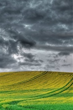 Preview iPhone wallpaper England scenery, fields, tree, cloudy sky