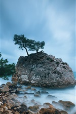 Preview iPhone wallpaper France coast, trees, rocks, the Mediterranean sea, blue sky