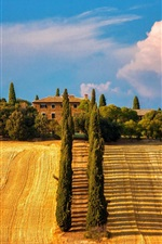 Preview iPhone wallpaper Italy, Siena, Tuscany, trees, cypresses, fields, house, summer