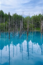Preview iPhone wallpaper Japan Hokkaido, blue pond, water reflection, trees, blue sky